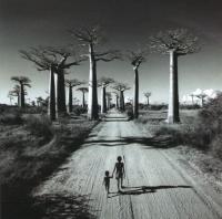 Долгая дорога по Африке