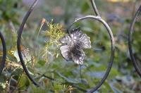 Кованый кленовый листок и ветка кустика