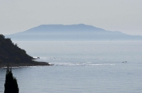 Берег в тумане. Морской берег в тумане