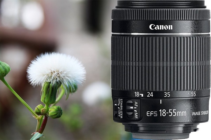 Обзор Canon EF-S 18-55mm f/3.5-5.6 IS STM с примерами фото со стабилизатором и без